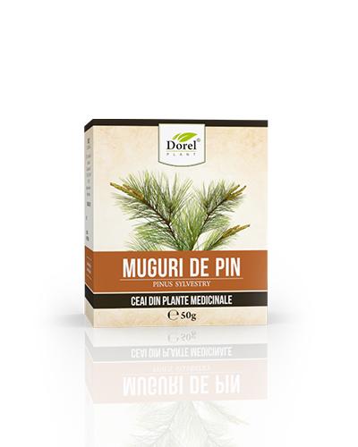 Ceai de Muguri de pin